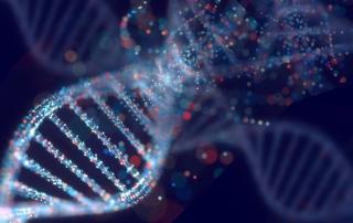 DNA - mutazione genetica dovuta all'inquinamento