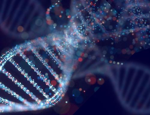 Mutazioni genetiche ereditarie indotte dall'inquinamento
