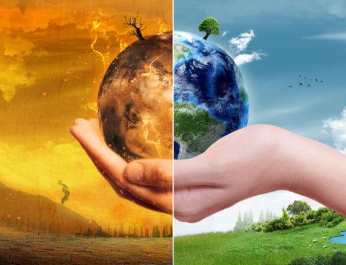 Pandemie ed inquinamento: due figli dello stesso genitore?